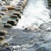 川が流れる