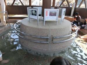 桜の足湯処2