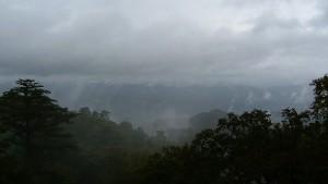 曇った景色