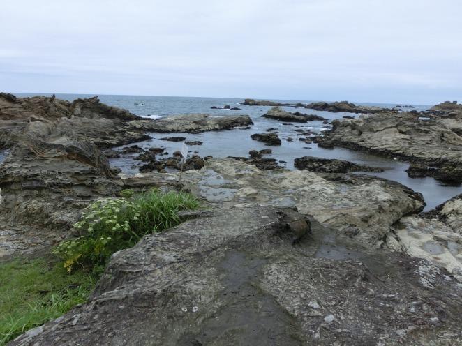 千葉県鴨川の仁右衛門島 日本百景の小島